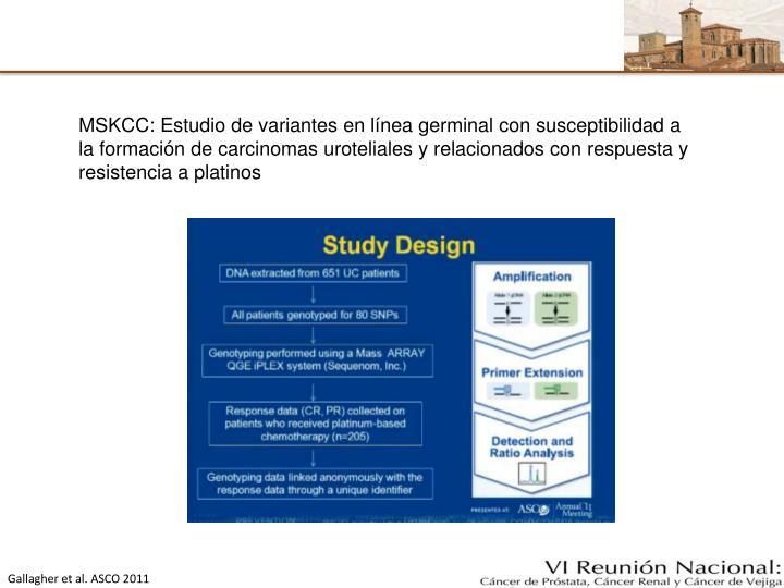 MSKCC: Estudio de variantes en línea germinal con susceptibilidad a la formación de carcinomas uroteliales y relacionados con respuesta y resistencia a platinos