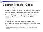 electron transfer chain aka electron transfer phosphorylation2