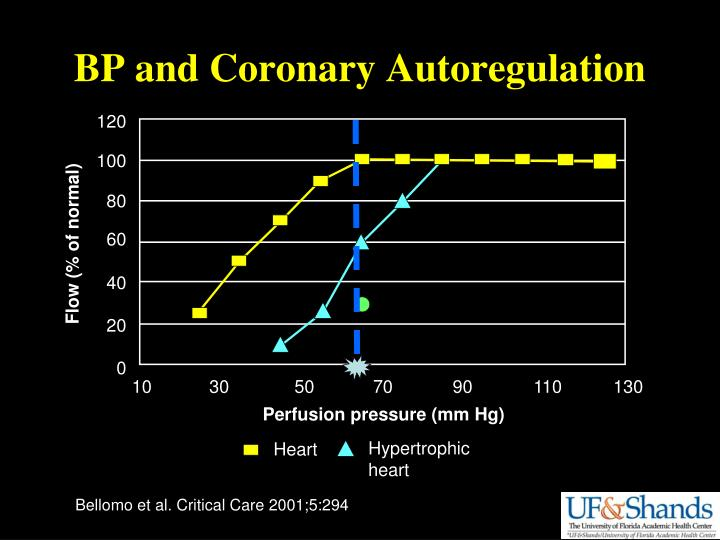 BP and Coronary Autoregulation
