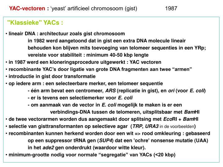 YAC-vectoren