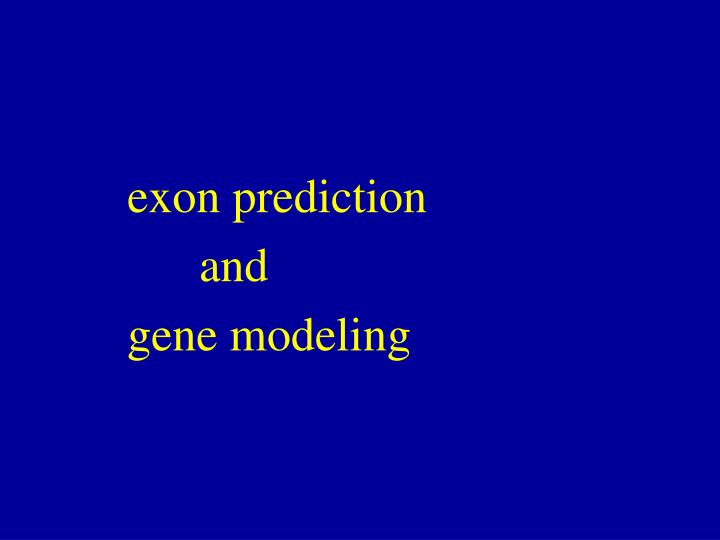 exon prediction