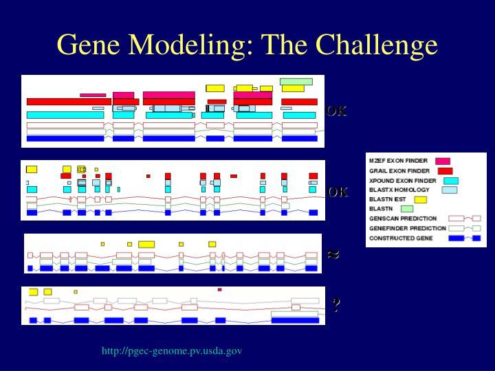 Gene Modeling: The Challenge