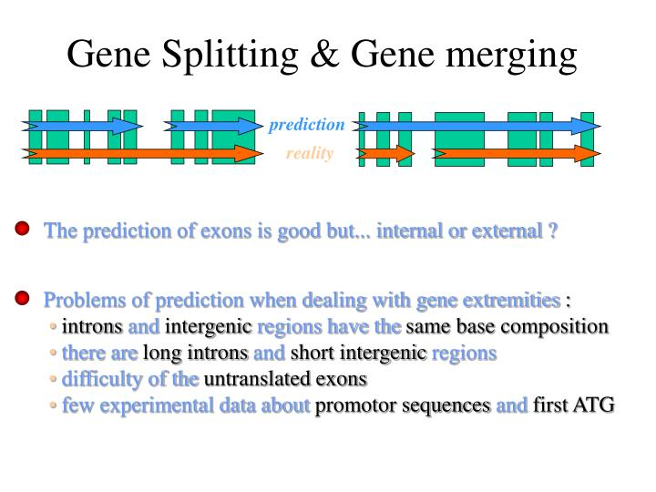 Gene Splitting & Gene merging