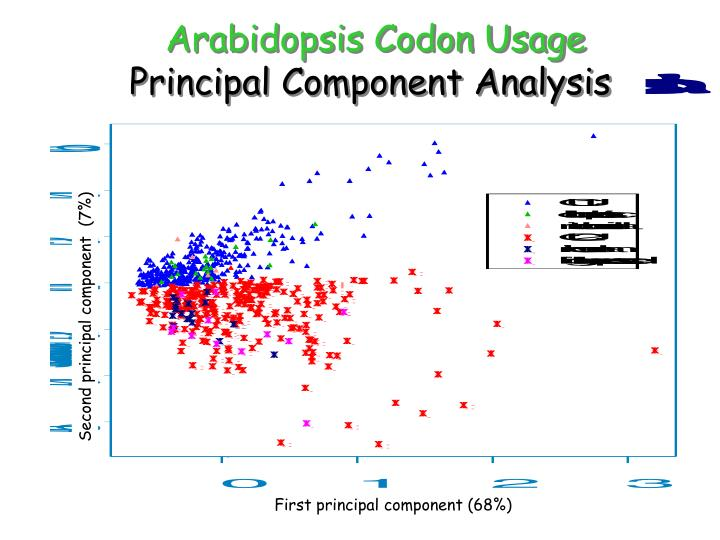 Arabidopsis Codon Usage