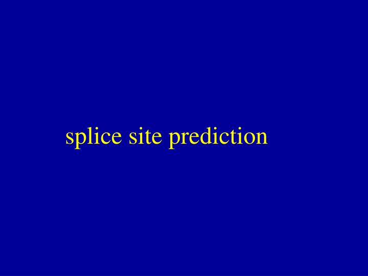 splice site prediction