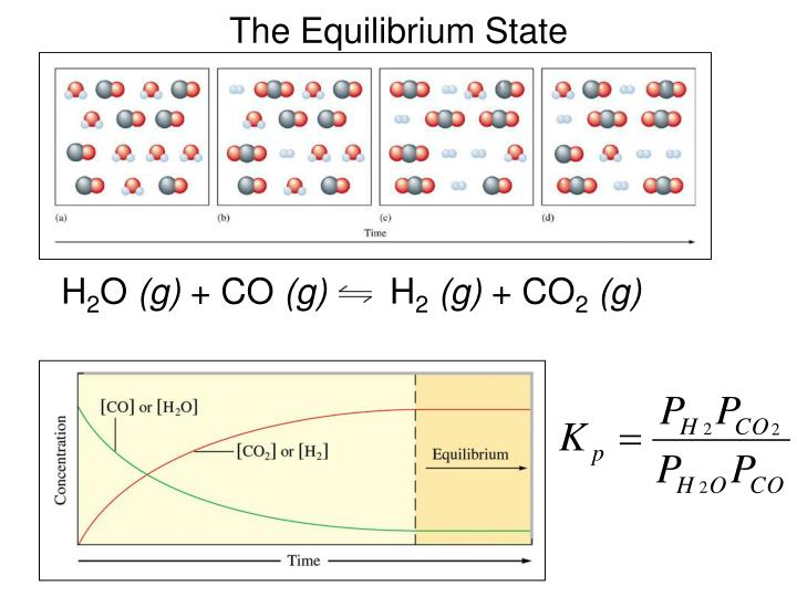 The Equilibrium State