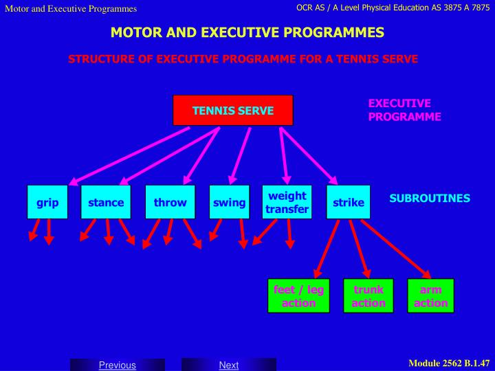 Motor and Executive Programmes