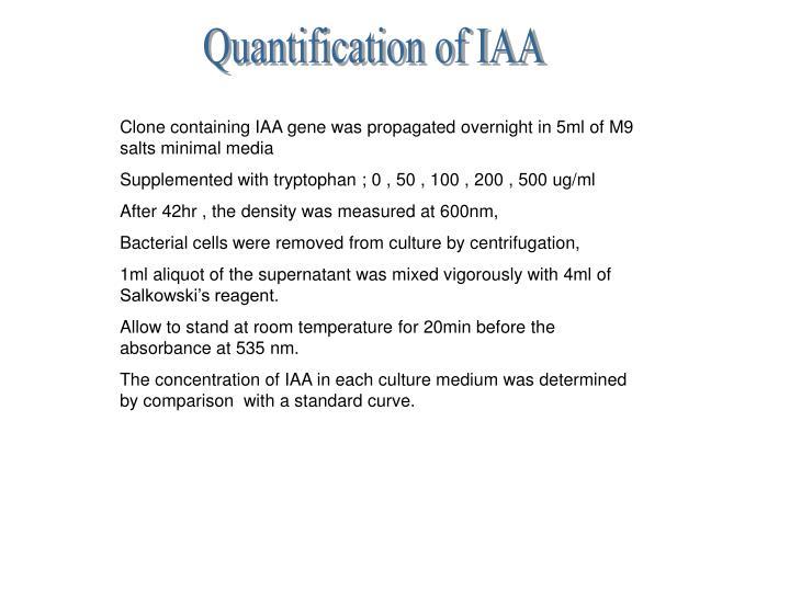 Quantification of IAA