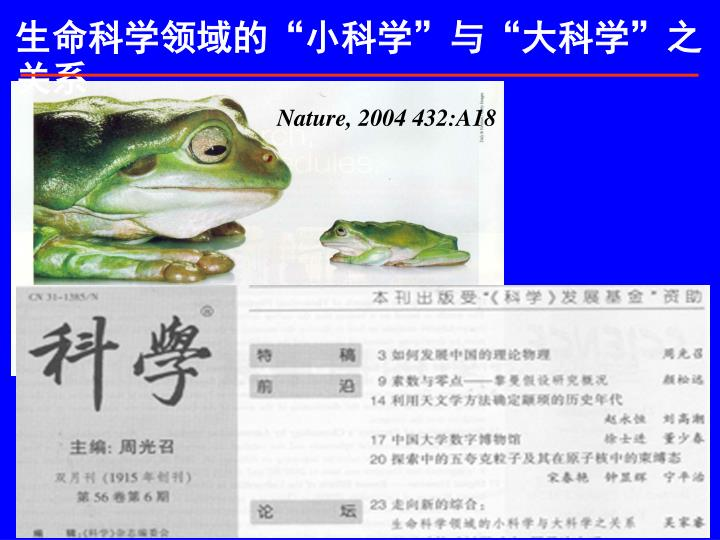 Nature, 2004 432:A18