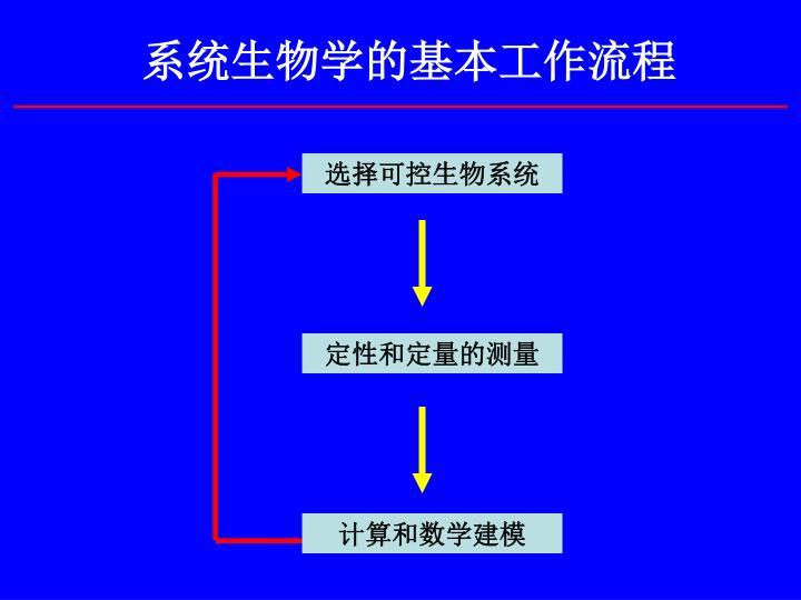 系统生物学的基本工作流程