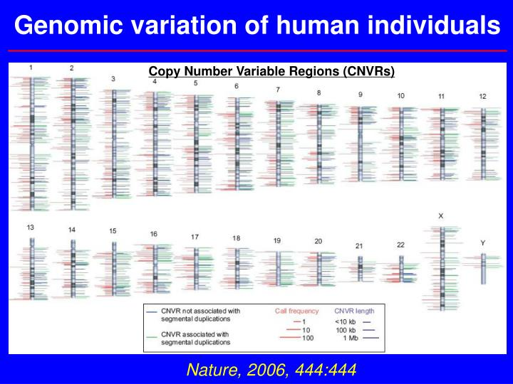 Genomic variation of human individuals