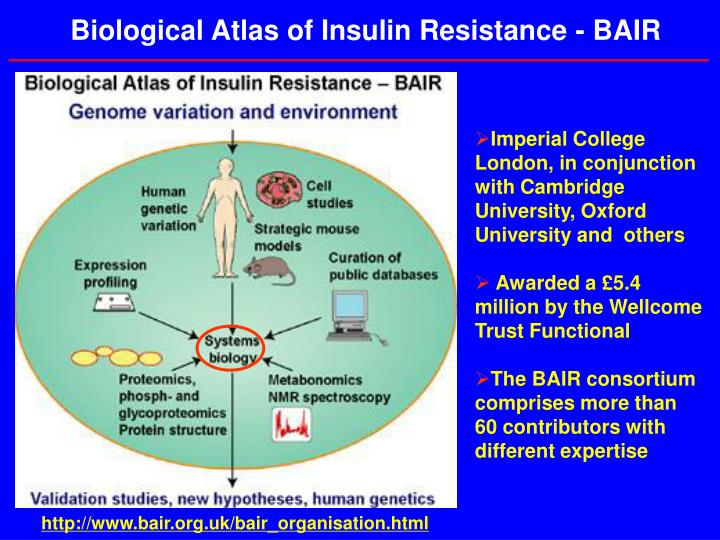 Biological Atlas of Insulin Resistance - BAIR