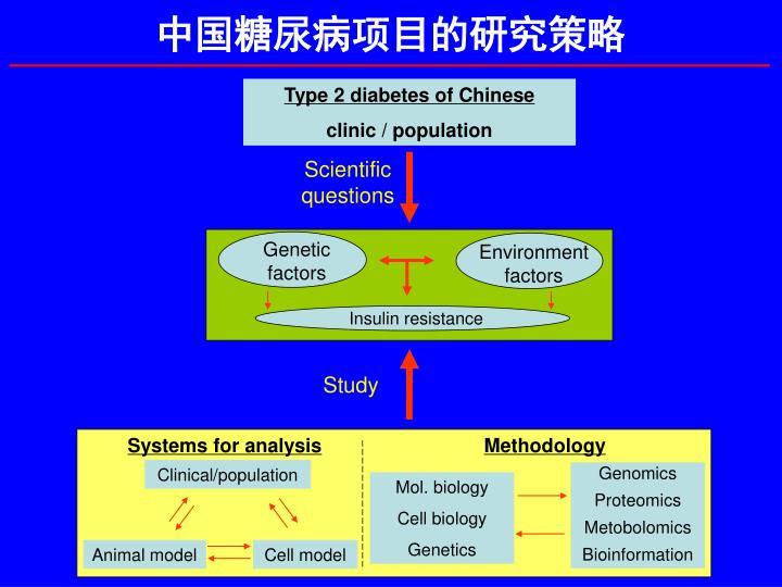 中国糖尿病项目的研究策略