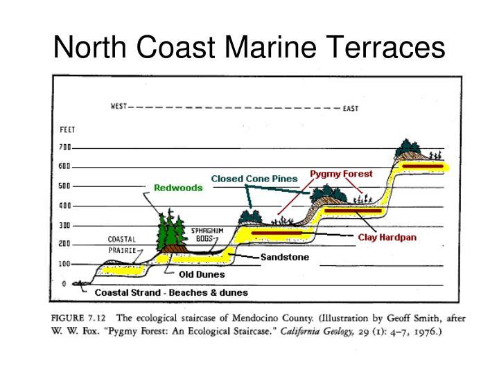 North Coast Marine Terraces