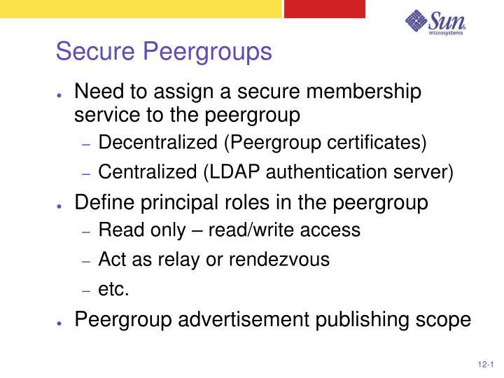 Secure Peergroups