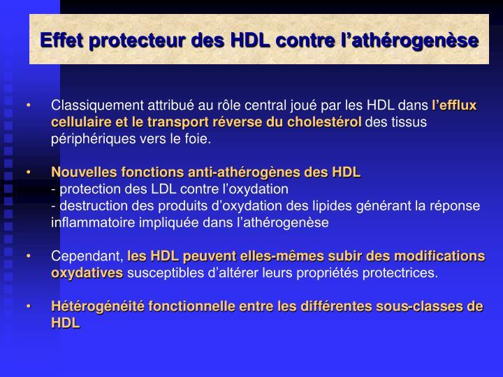 Effet protecteur des HDL contre l'athérogenèse