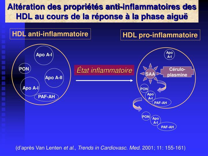 Altération des propriétés anti-inflammatoires des HDL au cours de la réponse à la phase aiguë