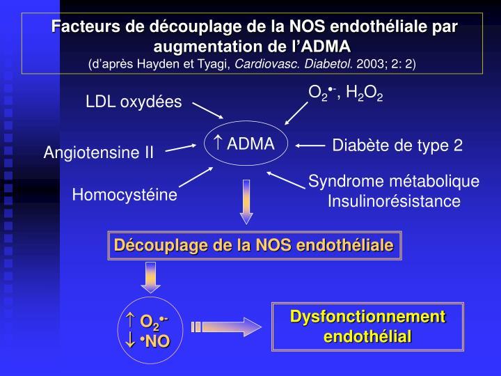 Facteurs de découplage de la NOS endothéliale par augmentation de l'ADMA