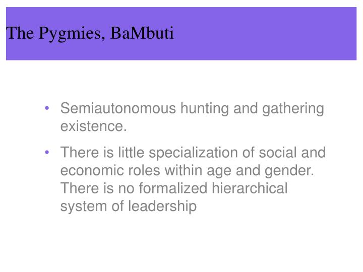 The Pygmies, BaMbuti