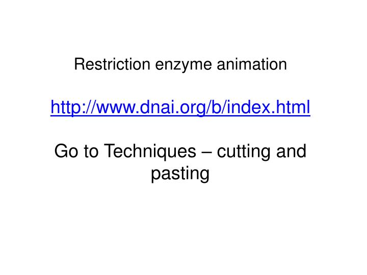 Restriction enzyme animation