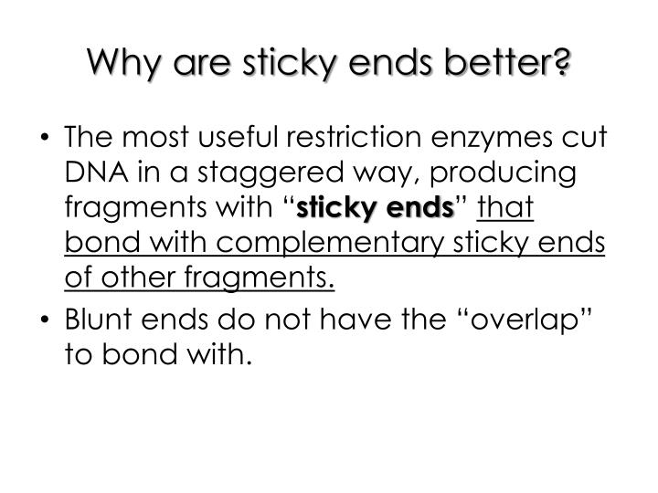 Why are sticky ends better?