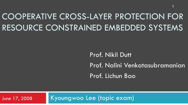 Cooperative cross layer protection for resource constrained embedded systems