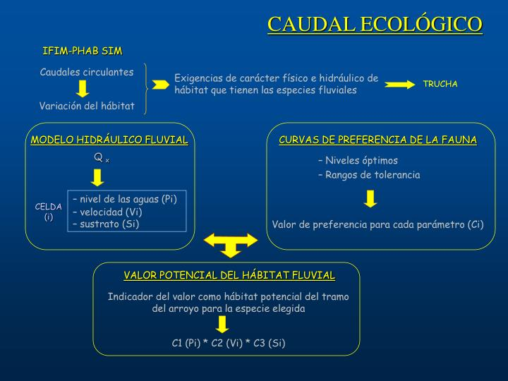 CAUDAL ECOLÓGICO