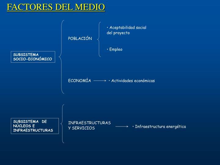 FACTORES DEL MEDIO