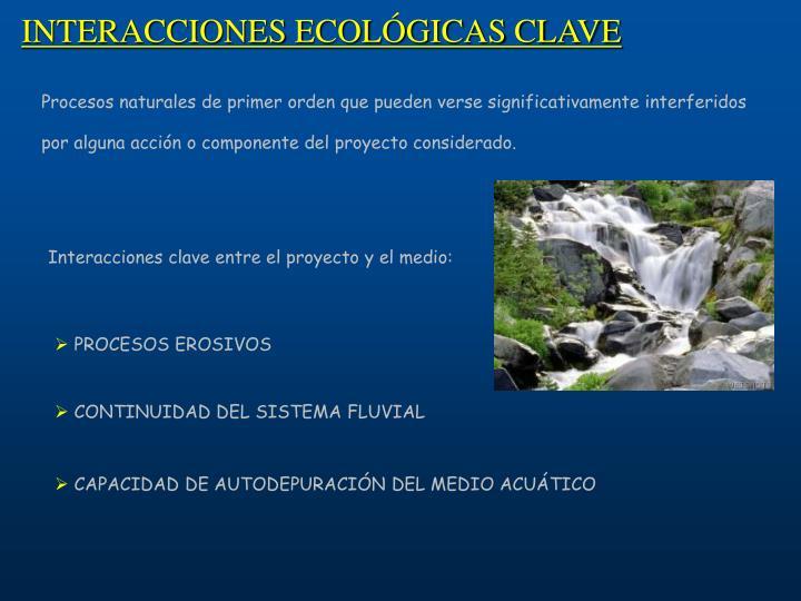 INTERACCIONES ECOLÓGICAS CLAVE