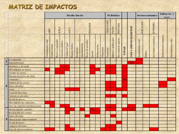 MATRIZ DE IMPACTOS