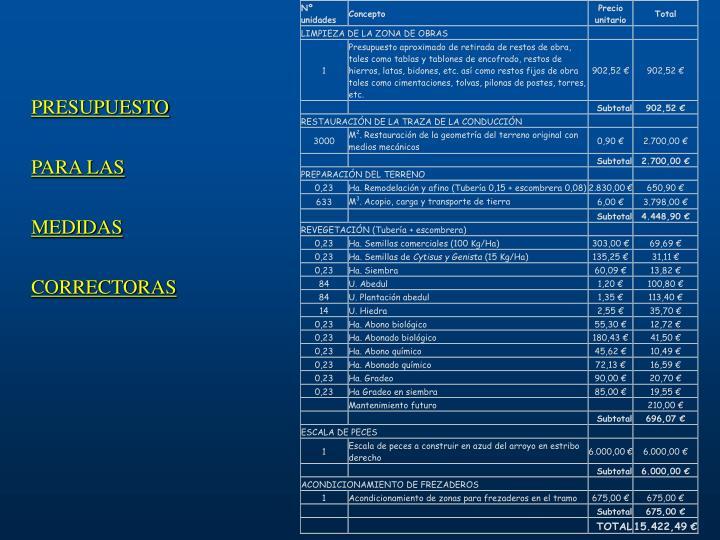 PRESUPUESTO PARA LAS MEDIDAS CORRECTORAS