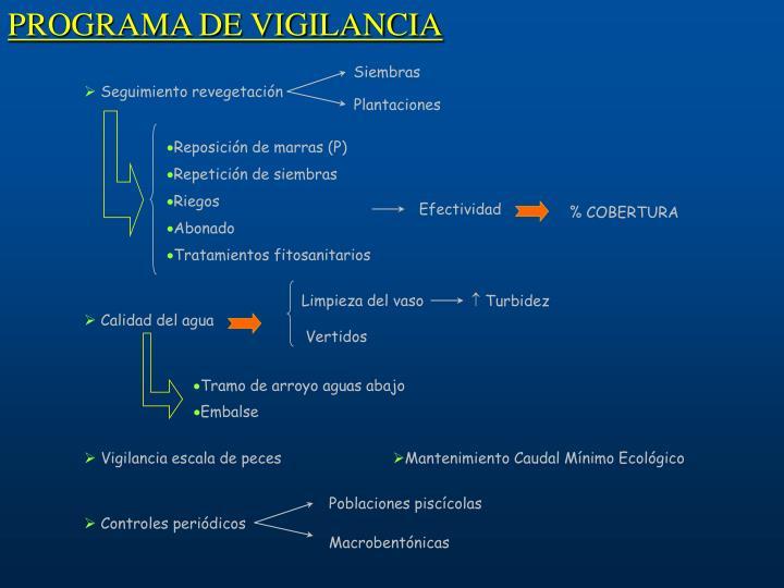 PROGRAMA DE VIGILANCIA
