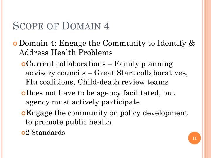Scope of Domain 4