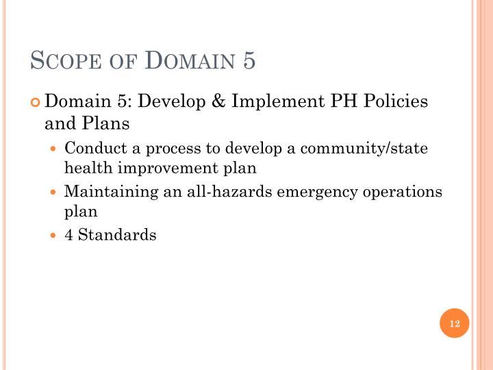 Scope of Domain 5