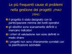 le pi frequenti cause di problemi nella gestione dei progetti phao 1994