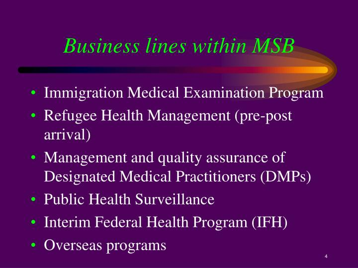 Business lines within MSB