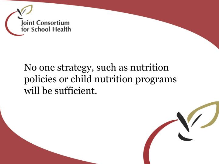 No one strategy, such as nutrition policies or child nutrition programs will be sufficient.