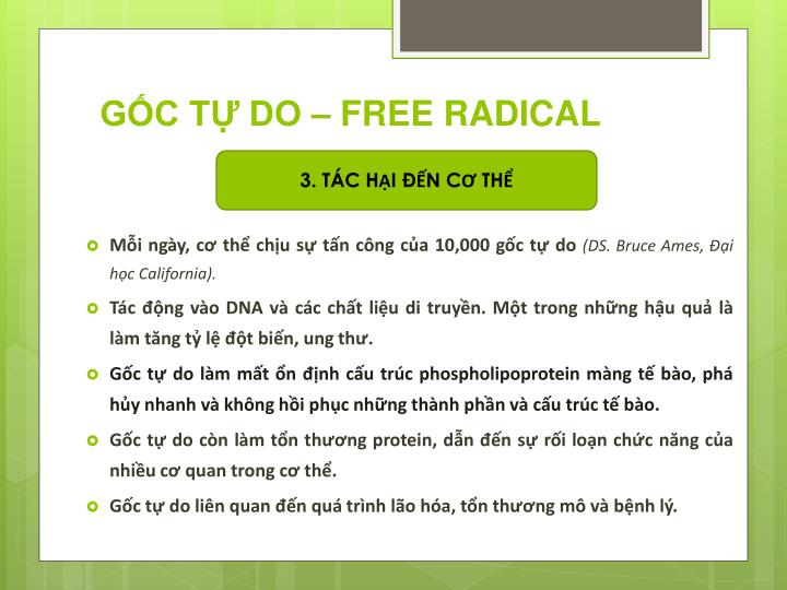 GỐC TỰ DO – FREE RADICAL