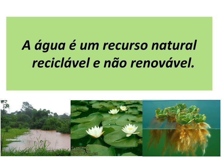 A água é um recurso natural reciclável e não renovável.