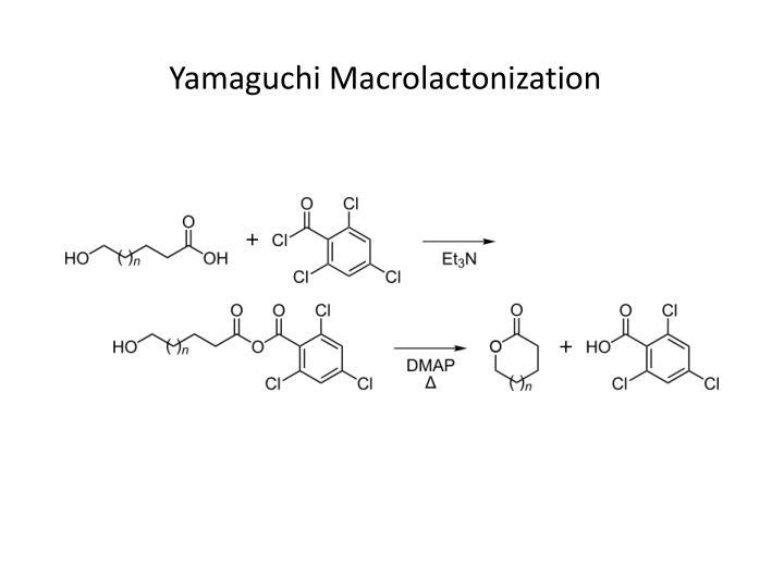 Yamaguchi Macrolactonization