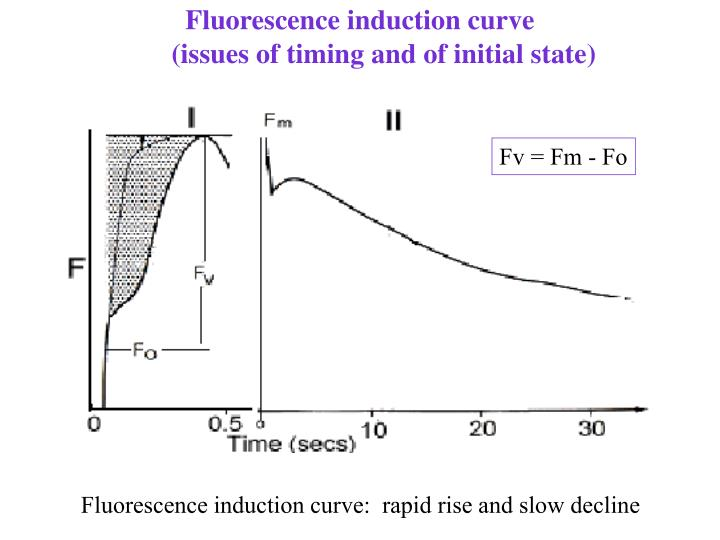 Fluorescence induction curve