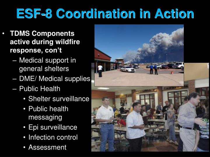 ESF-8 Coordination in Action