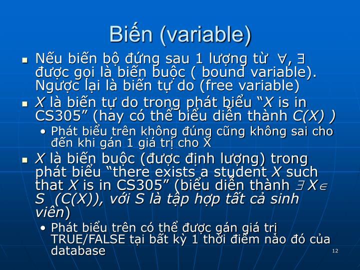 Biến (variable)
