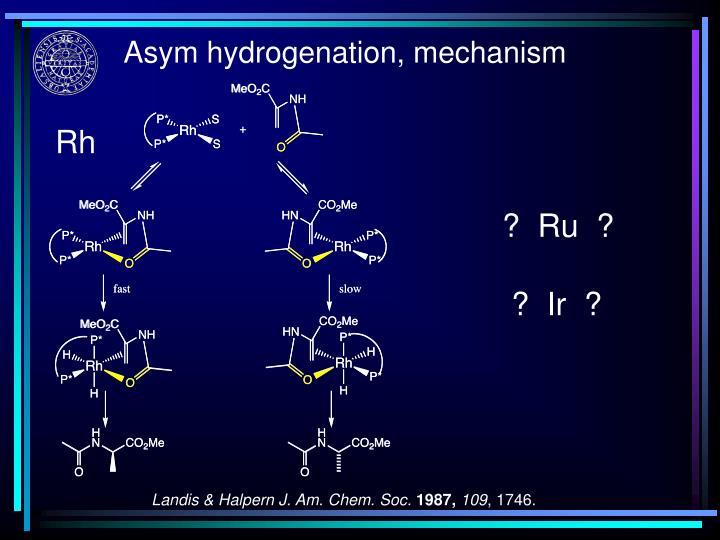 Asym hydrogenation, mechanism