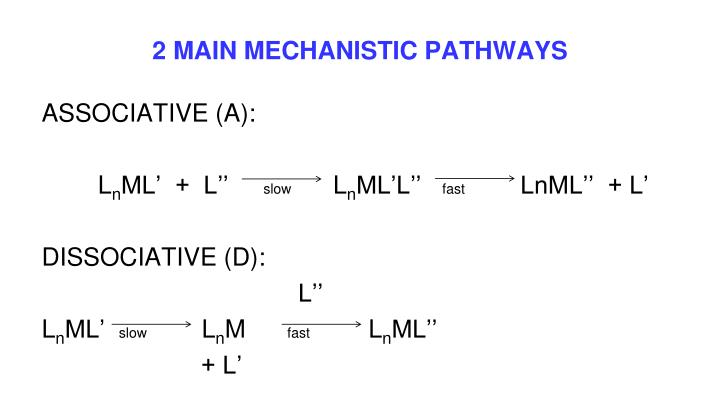 2 MAIN MECHANISTIC PATHWAYS