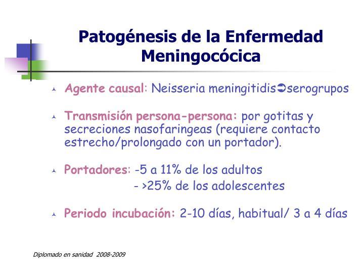 Patogénesis de la Enfermedad Meningocócica