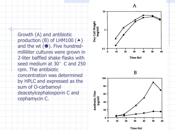 Growth (A) and antibiotic production (B) of LHM100 (