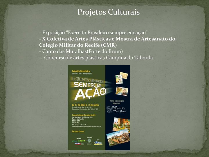 Projetos Culturais