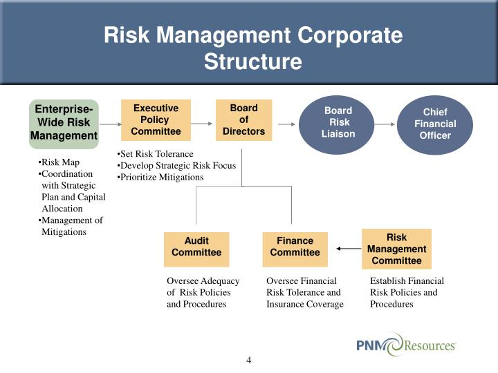 Risk Management Corporate Structure