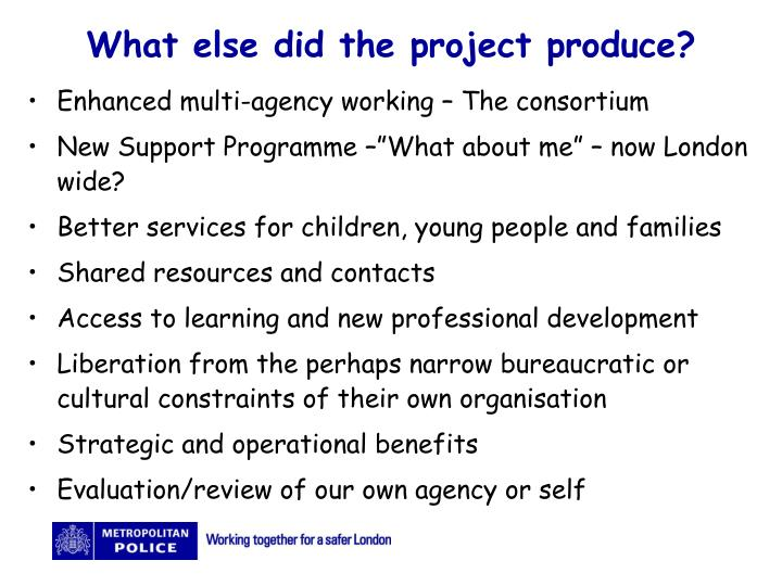 What else did the project produce?